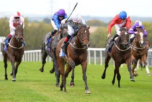 Sod's Law races clear for a victory at Pontefract last season. Picture: Alan Wright