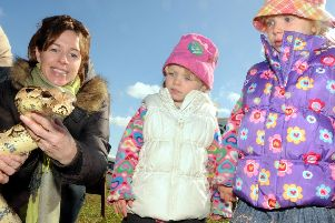 2010: Amelia and Sophie Hall look on in amazement as Carol Hall picks up Melisa the boa constrictor at the Moorgreen shows wildlife display.