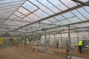 A refurbishment project to upgrade the greenhouses at the West Park nursery complex in Long Eaton is close to completion.