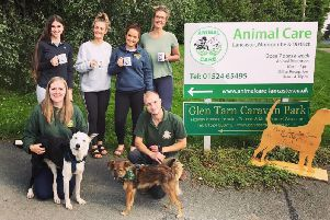 Recruitment experts Fresh Perspective pledge to help rescue animals find a 'Fresh' start