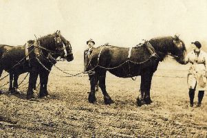 This photograph was taken in the Talbot Meadow, off Garstang Rd, Chipping, now the site of the village hall, football fields and children's play area. During the WW1 women were needed to work on the land. This photograph shows training in ploughing.