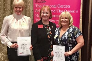 Diane Hobro and Helen Kerrigan-Hawkes receiving their Queens Nurse Awards at the Royal Garden Hotel, London