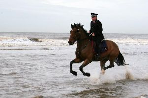 Lancashire Police horse Caton, pictured enjoying a gallop on Blackpool beach