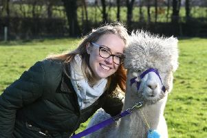 Josie Shahabeddin with one of her alpacas