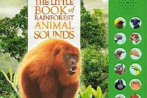 The Little Book of Rainforest Animal Sounds by Andrea Pinnington and Caz Buckingham