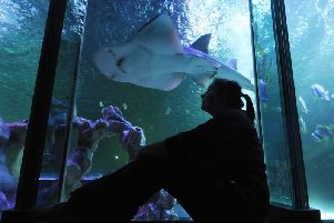 Sea Life Blackpool, one of the attractions owned by Merlin which has just been bought in a 5.8bn deal