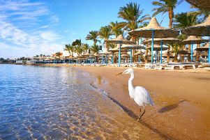 Hurghada is the location with the highest number of food poisonings reported.