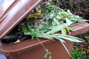 A brown bin with green waste in it