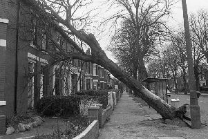 Damage to a house in Watling Street Road, Fulwood, Preston, where a tree was uprooted in the storm