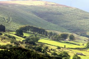 Get out and about in the Peak District this autumn