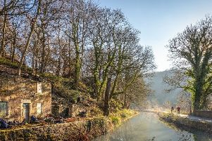 Derbyshire Wildlife Trust launches Cromford canal cottage crowdfunder