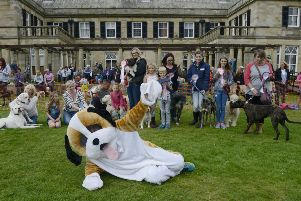 The North East Dog Festival at Kirkley Hall'Lots of fun for lots of dogs.'Picture by Jane Coltman