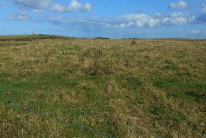 A section of the proposed Highthorn opencast mine site near Widdrington and Druridge Bay.