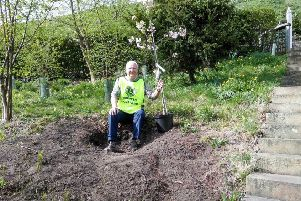 Lion Chris with one of the new crab apple trees