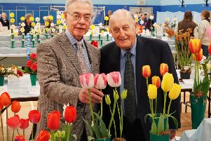 Alnwick Spring Show chairman David Parker shows Sir John Hall some of the blooms.'Picture by Jane Coltman