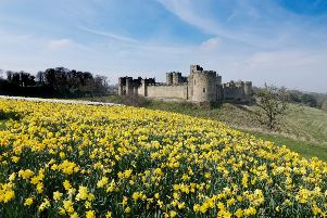 Alnwick Castle. Picture by Jane Coltman