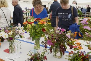 A previous Warkworth Show  Picture by Jane Coltman