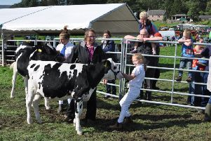 Lots of fun at this year's show