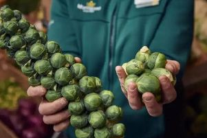 Will you be serving wonky sprouts this Christmas?