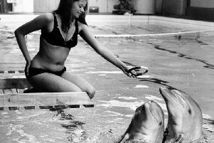 Pictured is Miss Susan Shieldsof Pickering, aged 20,training dolphins at the facility.