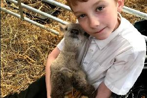Carly's nine-year-old son Kassius with the Ryeland Ewe lamb.