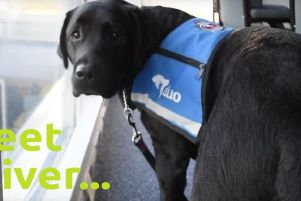 Oliver is helping victims of crime