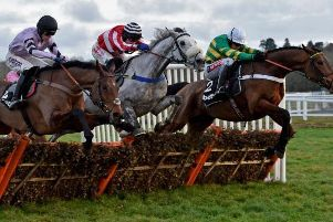 Three in a line at the final flight in the Grade One Challow Novices' Hurdle at Newbury. The winner was Champ (right), from Getaway Trump (nearside) and Kateson (centre).