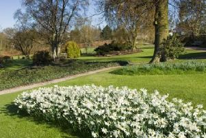 Flasher 'indecently exposed himself' to woman near Harlow Carr Gardens in Harrogate