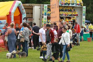 Lowedges Festival has attracted thousands of visitors to Greenhill Park.
