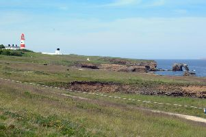 A sunny day at Whitburn cliffs, south of Souter Lighthouse