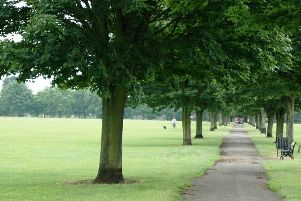 Doncaster green space - Town Field