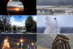 So many beautiful pictures made the top 12.