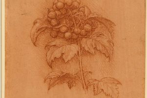 One of the drawings which will feature in the exhibition