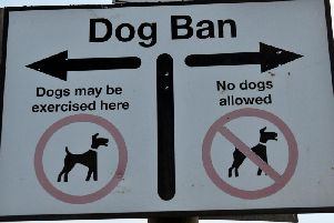 The beach dog ban returns next month.