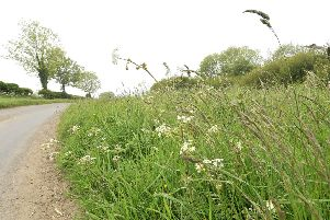Enjoy a summer day out on this pretty walk from Suffield to Silpho