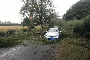 Lucky escape for the occupants of this car after lightening hit a tree in Foxholes, North Yorkshire.