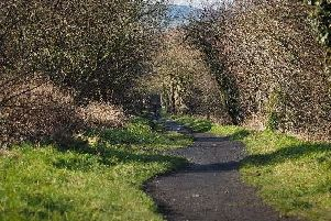 Scarborough Councils cabinet has moved forward with a 3.5 million plan to restore and rejuvenate a 21-mile stretch of former railway line between Whitby and Scarborough