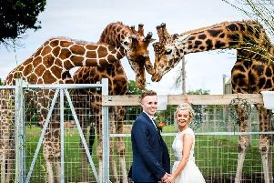 Get married at Yorkshire Wildlife Park