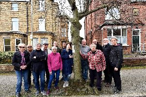 Residents on Westbourne Park campaign to save their trees.