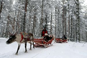 Tourists expecting scenes like this in Lapland this Christmas could be in for a shock because there's currently no snow.