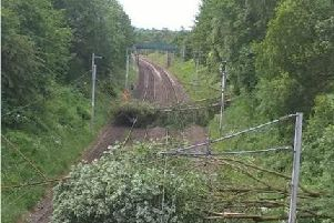 Strong winds brought by storm Hector felled the trees completely blocking the lines on Thursday morning.