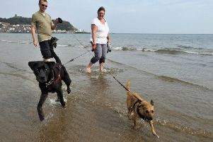 The annual ban forbidding dogs from Morecambe beaches over the summer is coming into force