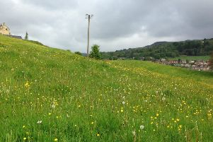 Letter: Protect meadow from new homes