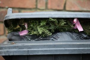 The council runs free garden waste pick-ups for eight months of the year.