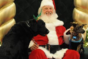 Ackworth Garden Centre is giving local pets the chance to see Father Christmas. Stock image.