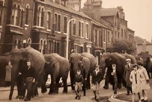 Circus elephants at Eastmoor Road in the 1950s. Picture courtesy of One to OneDevelopment Trust's cityfieldsdreamingstreaming.co.uk.
