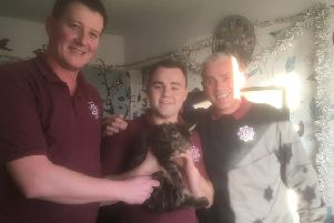 North Yorkshire Fire & Rescue photo taken after officers rescued a 12-week-old kitten from inside a living room sofa at a family home in Tadcaster.