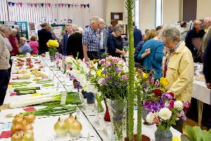 Scholes village show declared a success
