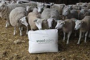 The Woolroom