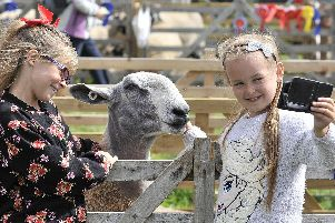 Fun at Danby show last year.